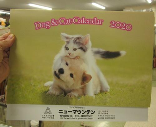 2020年度犬猫カレンダー